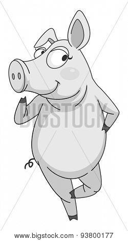 Close up cute pig standing alone