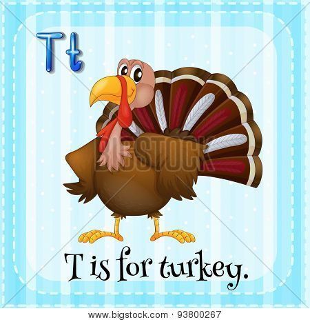 Flashcard letter T is for turkey