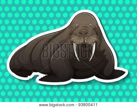 Giant walrus on blue polka dot background