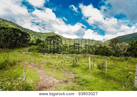 Minas Gerais countryside in Brazil, South America