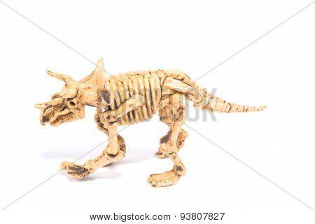the Dinosaur toy Skeleton
