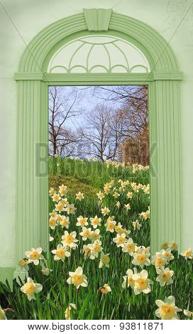 View Through Arched Door, Hill With Wild Narcissus
