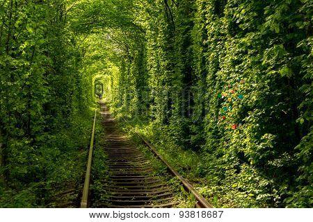 Klevan, Tunnel of love