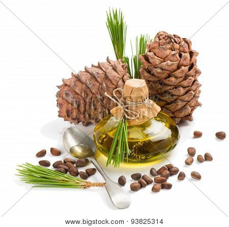 Cedar Pine Nuts, Cones And Oi