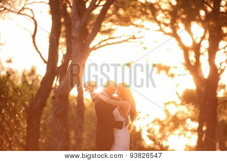 Bride And Groom Silhouettes In The Sunlight