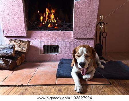 Warm Room