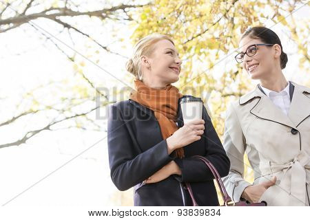 Low angle view of smiling businesswomen conversing at park