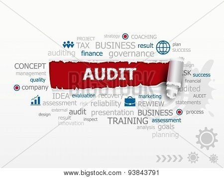 Word Cloud Audit Concept. Esign Illustration Concepts For Business.
