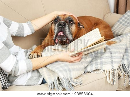 Cute dog and girl lying on sofa, on home interior background
