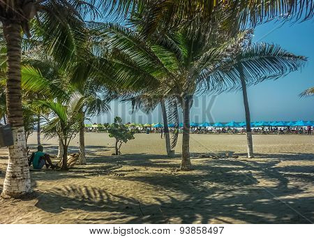 Caribbean Beach In Cartagena Colombia