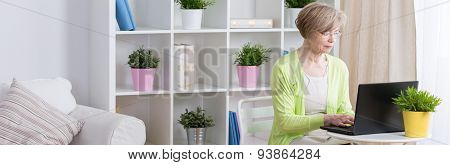 Elder Businesswoman At Home