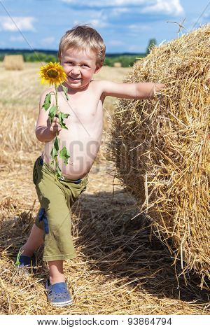 Boy Holding A Blooming Sunflower