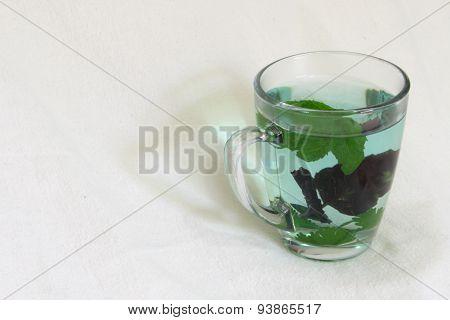 Transparent mug with fresh herbal tea