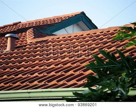 Sunrise Pattern On Roof Tiles In Sinagra