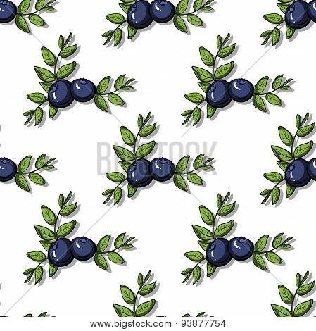 BlueberryPattern21