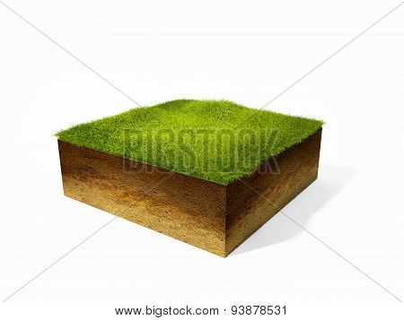 cross section of ground with grass