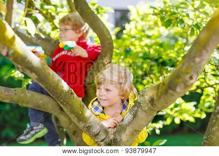 Two Active Little Kid Boys Enjoying Climbing On Tree