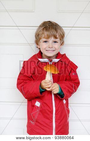 Little Kid Boy Holding Big Mushroom In Hands.