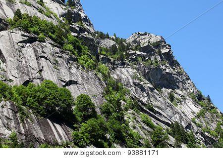 Italian Alps In Summer