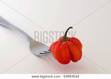 Art of Bell Pepper on the fork