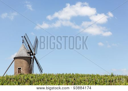 Vineyard with old windmill in Moulin a Vent, Beaujolais, France
