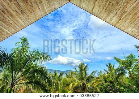 Wood Ceiling Texture And View To The Blue Sky