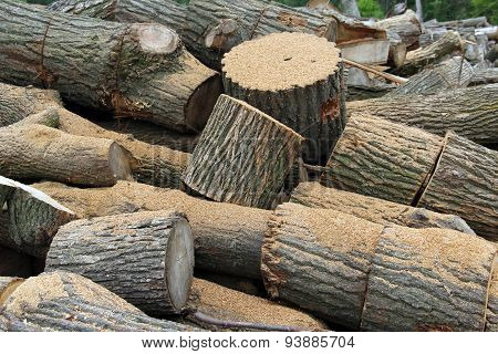 Oak Firewood Wood Pile Background