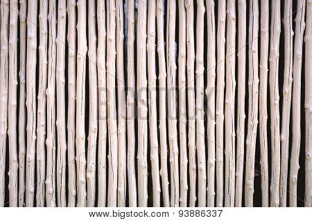 White Wood Pattern