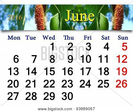 Calendar For June 2016 With Image Of Birch's Leaves