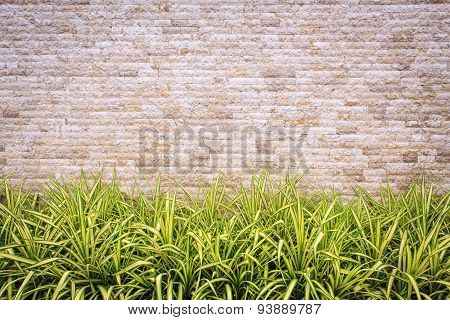 Travertine Stone Wall And Decorative Garden