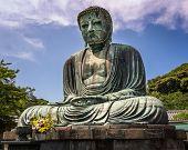 picture of buddha  - The Great Buddha of Kamakura  - JPG