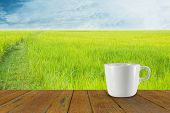 foto of coffee coffee plant  - Blur coffee cup and natural background - JPG
