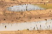 picture of drought  - Hot summer water source exhaustion bottom of lake became drought land water security is environment problem of global change climate make disaster - JPG
