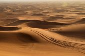 picture of saharan  - footprints on sand dune in Rub  - JPG