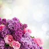 stock photo of purple rose  - Purple Lilac flowers with pink roses close up   on bokeh background - JPG