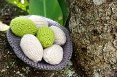 pic of gift basket  - Handmade basket of egg Easter symbol traditional culture closeup of egg on green background knit gift from wool to make decorative on holiday - JPG