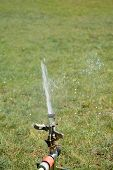 pic of sprinkler  - Sprinkler splashing with water on lawn in garden - JPG