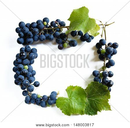 a bunch of grapes or a frame with a photo of the bunch for a micro-stock
