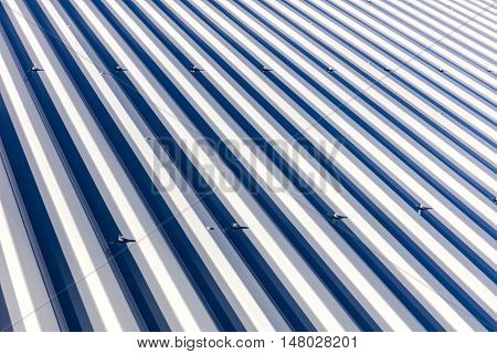 Corrugated Metal Roof Background Texture In Sunlight