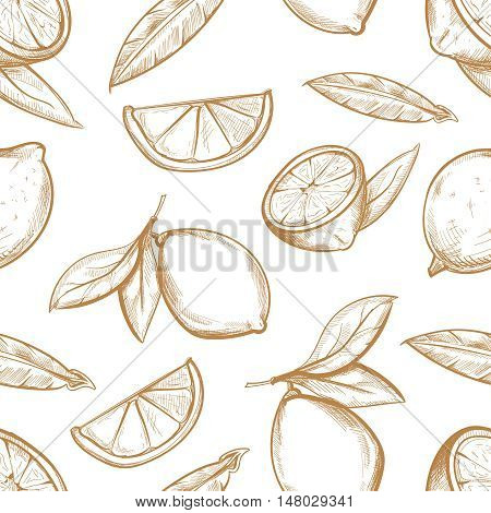 Vector seamless pattern with hand drawn lemons with branch, lemon blossom, citrus slices and leaves. Sketch background with sour fruit illustration