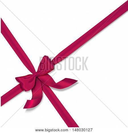 vector pink isolated realistic bow on white background