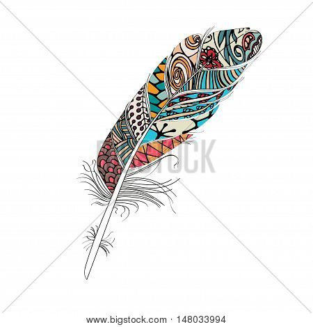 Colorful Feather isolated on white background colorful.