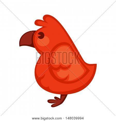 Cartoon parrot wild red bird. Tropical flying ara. Cartoon exotic bird vector illustration.