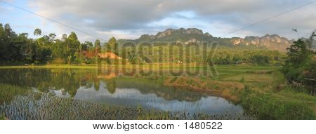 Lake And The Ricefields At The Sunset From Londa To Kete Kesu, Rantepao, Sulawesi Island, Indonesia,