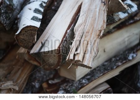 Chopped raw firewood on a stack outdoors