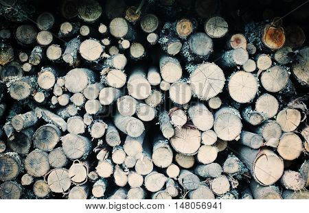 Firewood background. Chopped firewood on a stack.