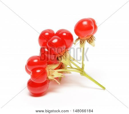 Ripe stone berry isolated on white background