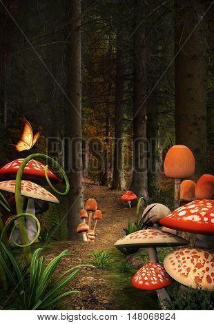 Enchanted nature series - Colorful mushrooms path