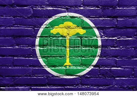 Flag Of Sao Carlos, Sao Paulo, Brazil, Painted On Brick Wall