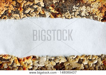 Ragged Piece Of Paper On Rusty